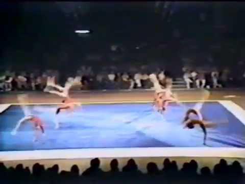 1983 Professional Gymnastics Classic