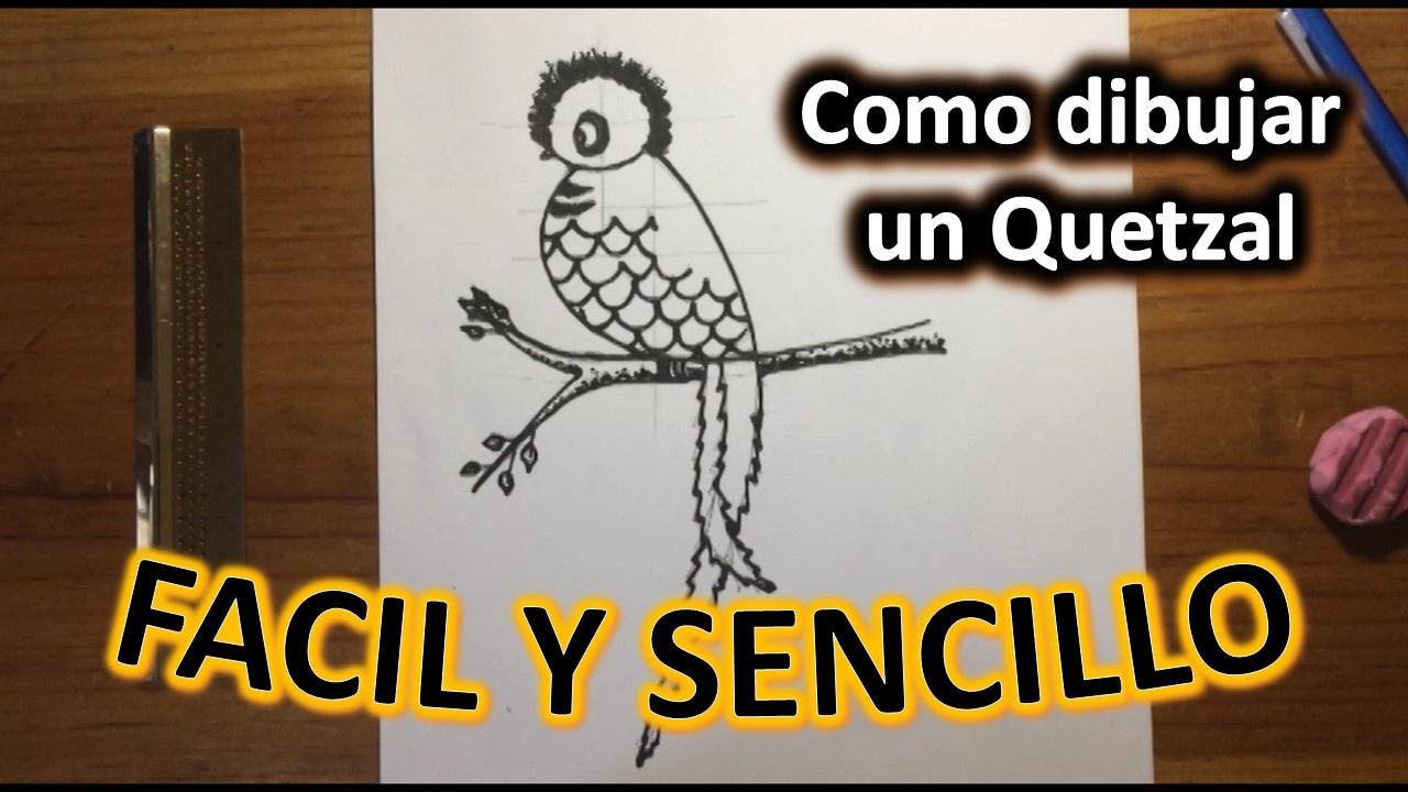 Como dibujar un quetzal a l piz f cil y sencillo paso a for Como disenar un jardin paso a paso