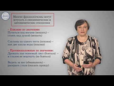 Знайка видеоуроки русский язык 6 класс