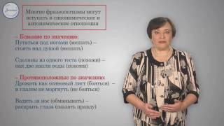 Русский 6 Фразеологизмы  Источники фразеологизмов