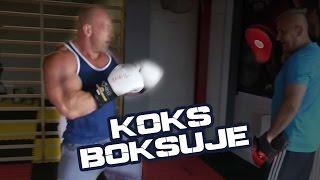 Hardkorowy Koksu trenuje boks i po co ? 2017 Video