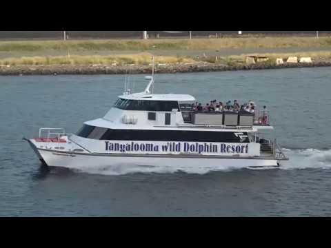 Day 1 Depart Brisbane bound for NZ on the Sea Princess