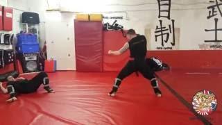 Master D.Dillon and Tony (Kicking techniques)