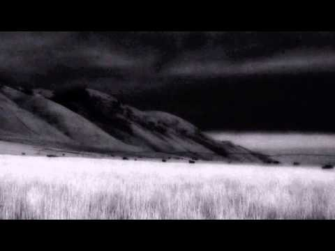 Peter Gabriel - Blood Of Eden (alternate)