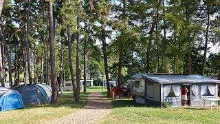 TCS Camping Orbe une oasis de verdure