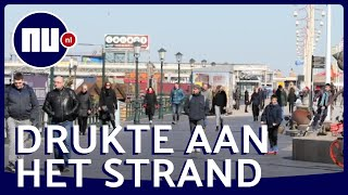 Adviezen In De Wind Geslagen: Drukte Op Boulevard Scheveningen   Nu.nl