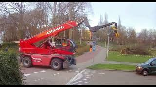 Cutting Hazardous Tree with a GMT Equipment Grapple Saw - Andeweg Zuidland - Magni telehandler
