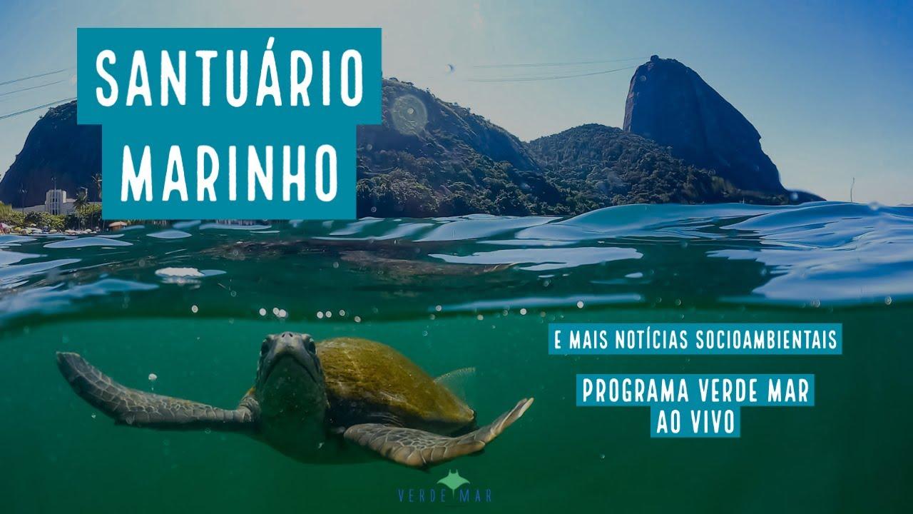 O Santuário Marinho da Paisagem Carioca na Praia Vermelha