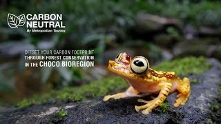 Travel carbon-neutral with Metropolitan Touring