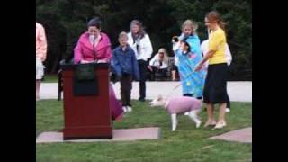 Wag Nation Dog Fashion Show, Rough Point, Newport, Ri Sept. 10. 2009