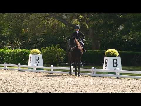 Julia Nemr com Palmito Jan: campeã brasileira mini mirim - Horse Show Brasil