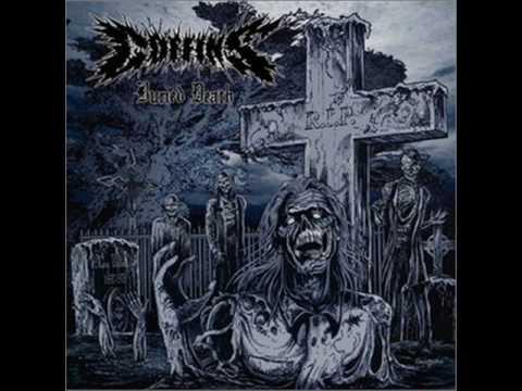 Best Metal Albums of 2008