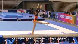 CoP 2017-20: Possible Beam Routine for Fan Yilin