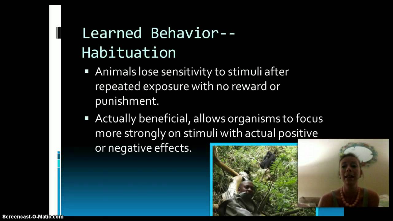 ap biology animal behavior essay Ap biology lab 11 ap biology lab 2 a single oniscus asellus was placed in a certain ph and its behavior was observed for one minute animal life resource.