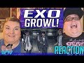 EXO IS LIFE EXO 으르렁 Growl Music Video Korean Ver REACTION mp3