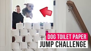Reinventing homeschool | Dog toilet paper jump challenge | The LeRoys