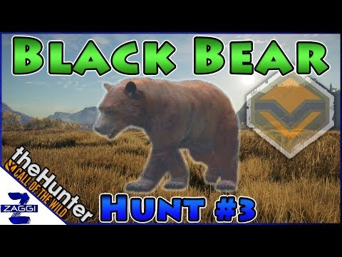 Diamond Black Bear before Flinter #3 Call of the Wild