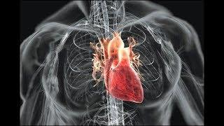 Операция на сердце: ДА или НЕТ. Пролапс митрального клапана.