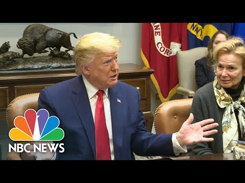 'You Can't Buy An Election': President Donald Trump Comments On Super Tuesday Results | NBC News
