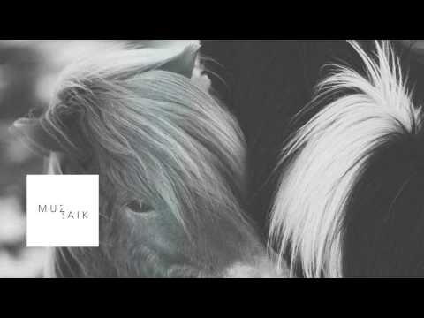 Deep and dub techno mix - FAIDEL - Muzaikfm 026
