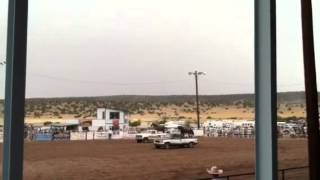 eagar rodeo horse on truck