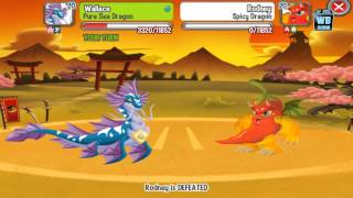 Dragon City: All Shogun Battle Dragons [Japanese Island Dojo]