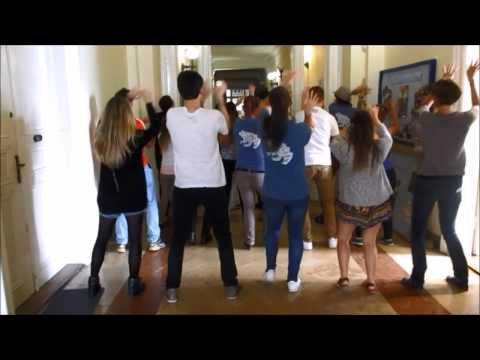 AIESEC Budapest University Trainee Roll Call