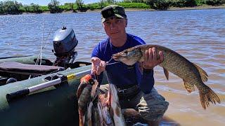 Рыбалка на реке Тавда