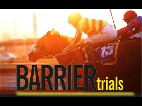 20180314 Greyville Barrier Trial 10 won by DAME COMMANDER