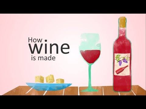 how wine is made (animation)