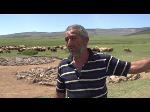 Armenia's Ancient Dragon Stones