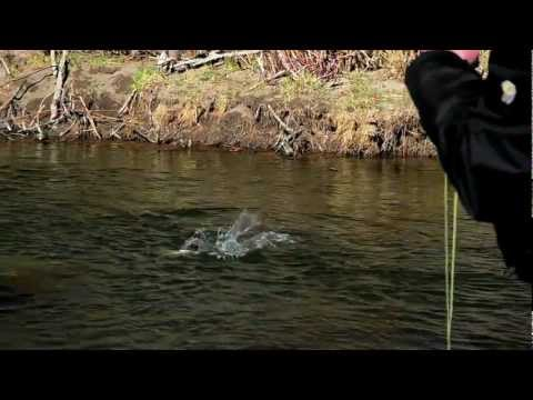 200 East - Fly Fishing the Missouri River