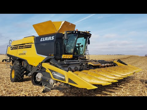 Harvesting Corn With a New Claas Combine