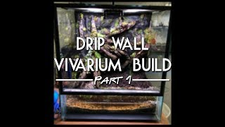 setting up a dart frog vivarium