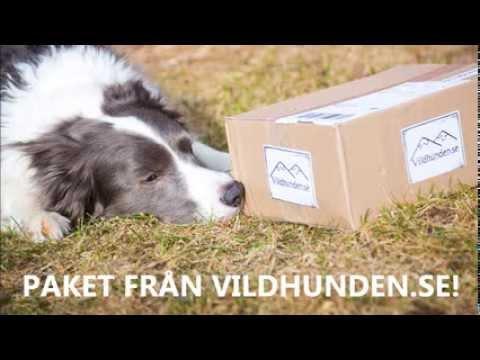 Paket från Vildhunden.se