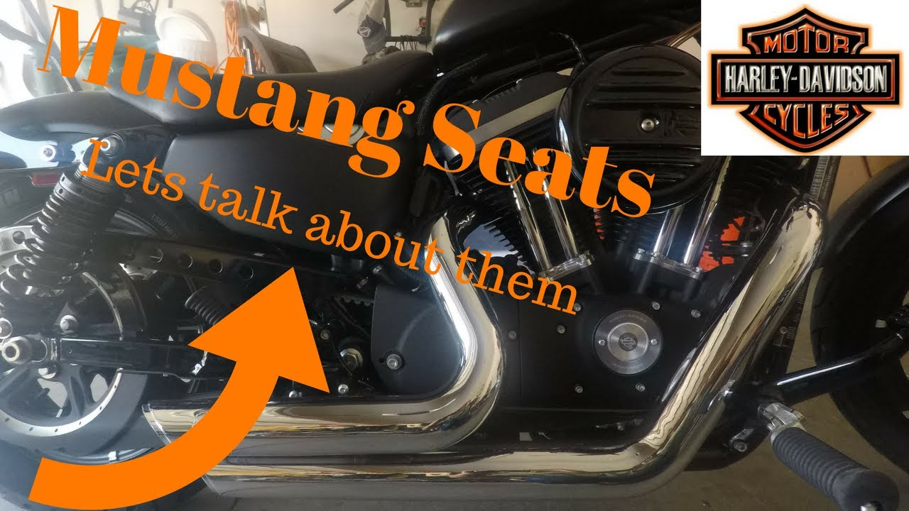 Mustang Seat Review on a Harley Iron 833 Sportster