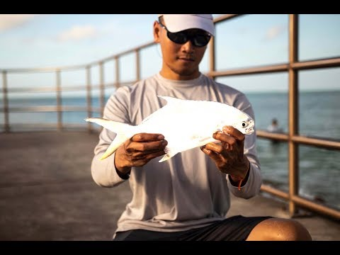 HOW TO CATCH POMPANO - Pompano Fishing Madeira Beach Florida
