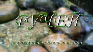 Журчание ручья ✿ 15 минут ✿ Murmur of the brook