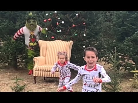 The Grinch Ruins Christmas