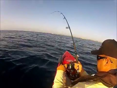 10 videos showing fishing rods breaking while anglers fight fish, Fishing Reels