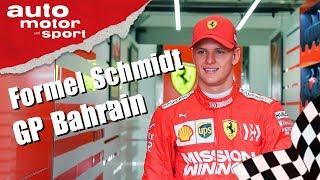 Ist Schumacher reif für die Formel 1? - Formel Schmidt zum GP Bahrain | auto motor und sport