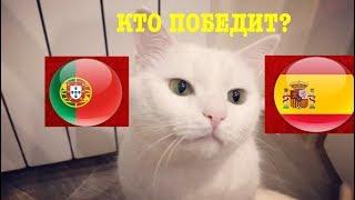 Испания vs Португалия КТО ПОБЕДИТ прогноз от кота Бонифация ЧМ2018