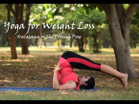 yoga for weight loss halasana or the plough pose │soul i m