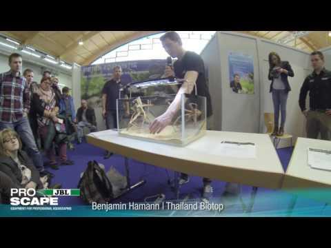 Das Biotop Aquarium: Thailand