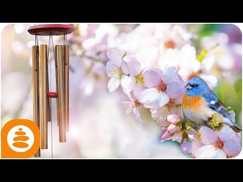 Wind Chimes, Relaxing Music, yoga, meditation, reiki, 4k - 0009