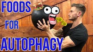 How to Boost Autophagy without Fasting