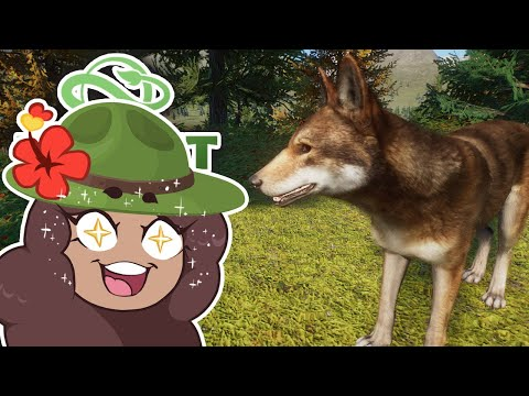 Red Wolves?! Chipmunks?! NEW Animal Mod Adventures!!🐺 Planet Zoo: Redwood Park • #1