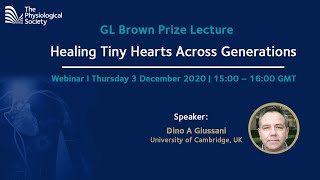 GL Brown Prize Lecture: Healing Tiny Hearts Across Generations