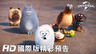 【寵物當家】最新預告-6月29日 歡樂登場