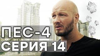 Сериал ПЕС - 4 сезон - 14 серия - ВСЕ СЕРИИ смотреть онлайн | СЕРИАЛЫ ICTV